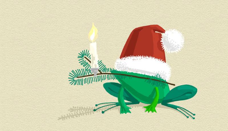 Frosch mit Weihnachtsmütze